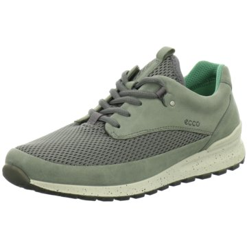 Ecco Sneaker Low oliv