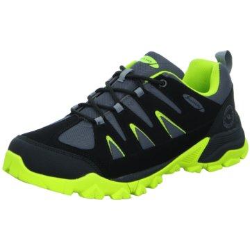 Sneakers Trailrunning schwarz