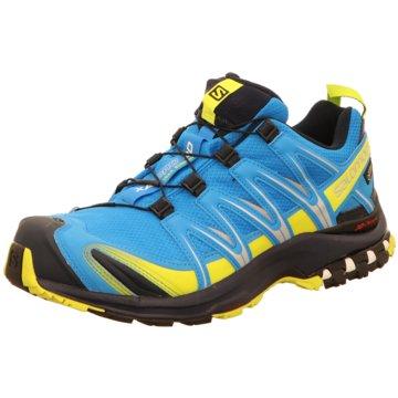 Salomon Komfort Schuh blau