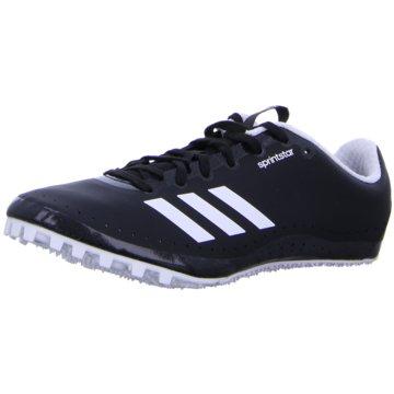 adidas Spikes -