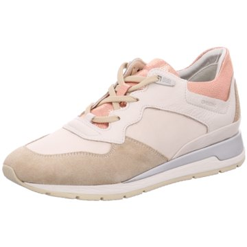Geox Sport Feelings beige