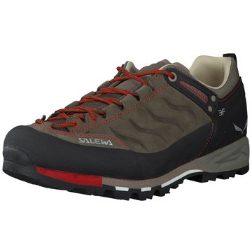 Salewa Outdoor Schuh -