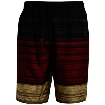 adidas BadeshortsDFB Shorts - FS1323 schwarz