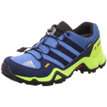 adidas Wander- & BergschuhTerrex GTX Outdoorschuhe blau