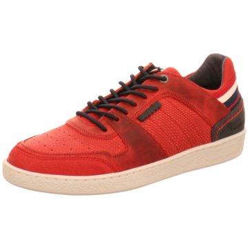 Bullboxer Sneaker Low rot