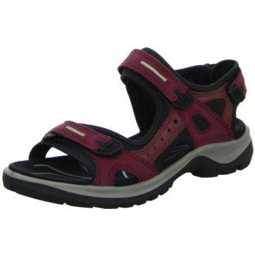 Ecco Outdoor Schuh rot