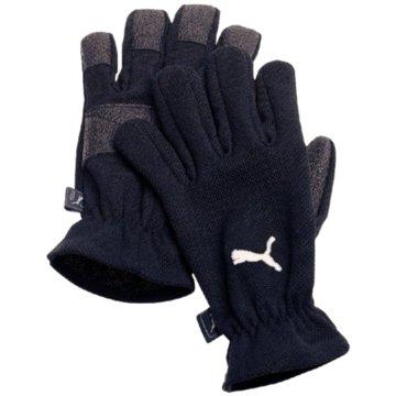 Puma TorwarthandschuheWINTER PLAYERS - 40014 schwarz