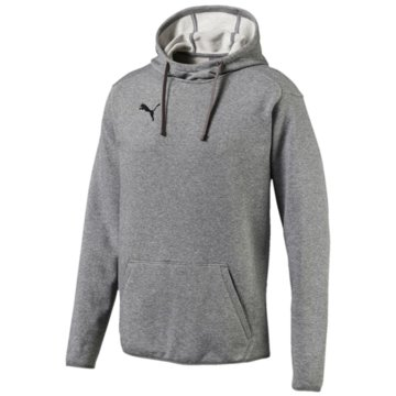 Puma SweaterLIGA Casuals Hoody grau