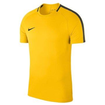 Nike FußballtrikotsKIDS' DRY ACADEMY 18 FOOTBALL TOP - 893750-719 -