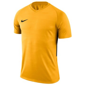 Nike FußballtrikotsDRI-FIT TIEMPO PREMIER - 894111-739 -