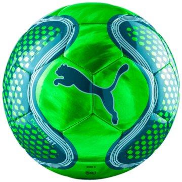 Puma FußbälleFuture Net Ball -