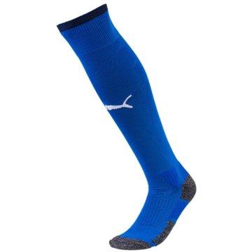Puma Fan-Accessoires blau