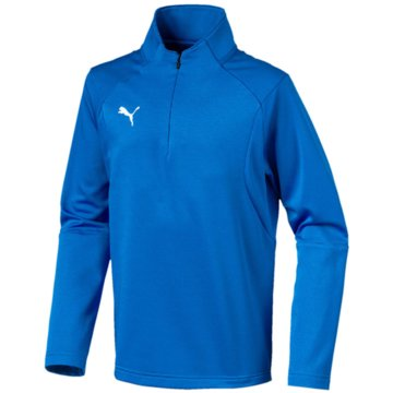 Puma Langarmshirt blau