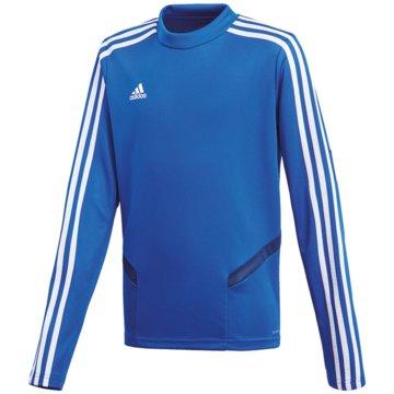 adidas SweatshirtsTIRO19 TR TOPY - DT5279 blau