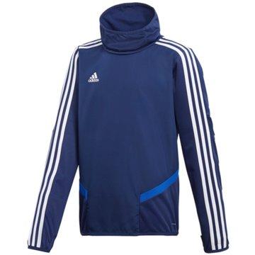 adidas SweatshirtsTIRO19 WRM TOPY - DT5282 blau