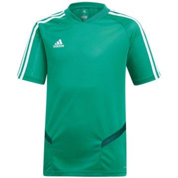 adidas FußballtrikotsTIRO19 TR JSYY - DW4810 -