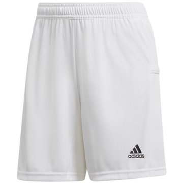adidas FußballshortsTEAM19 Knit Short Women -
