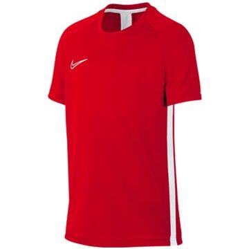 Nike T-ShirtsDRI-FIT ACADEMY - AO0739-657 rot