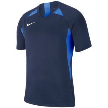 Nike FußballtrikotsNike Dri-FIT Striker V - AJ1010-411 blau