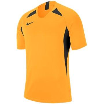 Nike FußballtrikotsNike Dri-FIT Striker V - AJ1010-739 gelb