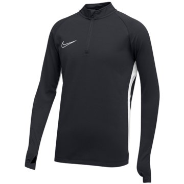 Nike FußballtrikotsNike Dri-FIT Academy19 - AJ9273-060 grau
