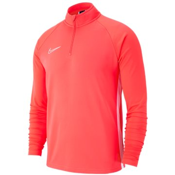 Nike FußballtrikotsNike Dri-FIT Academy19 - AJ9273-671 rot