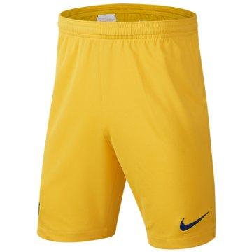 Nike Fan-HosenFC Barcelona 2019/20 Stadium Home/Away - AO1942-455 gelb