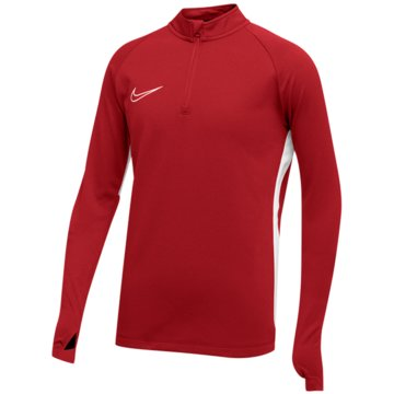 Nike FußballtrikotsNIKE DRI-FIT ACADEMY19 KIDS' SOCCER - AJ9273 rot