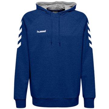 Hummel Hoodies blau
