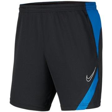 Nike FußballshortsNike Dri-FIT Academy Pro - BV6946-066 grau