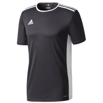 adidas FußballtrikotsENTRADA TRIKOT - CF1041 schwarz