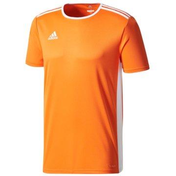 adidas FußballtrikotsENTRADA 18 JSYY - CF1043 -