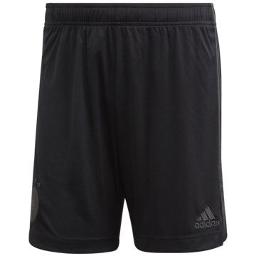 adidas FußballshortsDFB AUSWÄRTSSHORTS - EH6100 schwarz