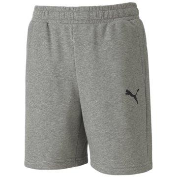 Puma Kurze Sporthosen grau