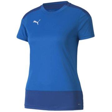 Puma Teamwear & Trikotsätze blau
