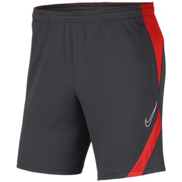 Nike FußballshortsDRI-FIT ACADEMY PRO - BV6946-060 grau