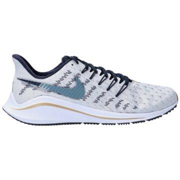 Nike RunningAIR ZOOM VOMERO 14 - AH7857 010 grau