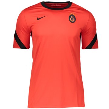 Nike Fan-T-ShirtsGALATASARAY STRIKE - CK9616-673 -