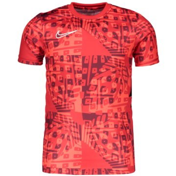 Nike T-ShirtsDRI-FIT ACADEMY - CT2388-635 -