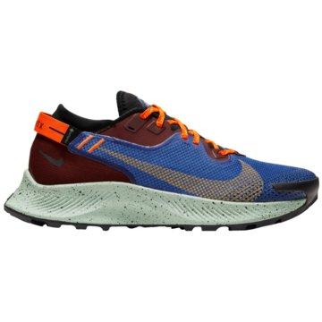 Nike RunningPEGASUS TRAIL 2 GORE-TEX - CU2018-600 -