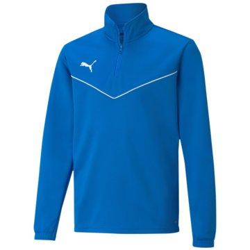 Puma SweatshirtsTEAMRISE 1/4 ZIP TOP JR - 657395 blau