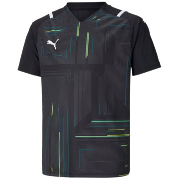 Puma T-ShirtsTEAMULTIMATE JERSEY JR - 705078 schwarz