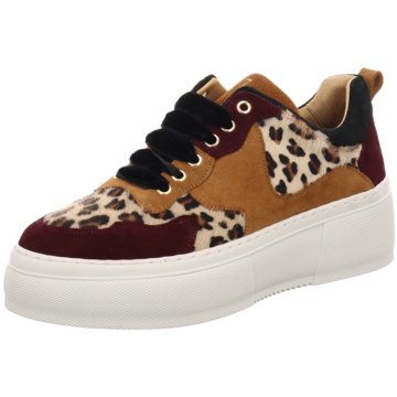 Cycleur de Luxe Plateau Sneaker animal