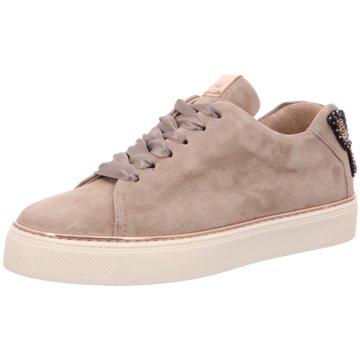 Alpe Woman Shoes Sneaker World beige