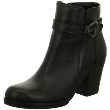Shop Schuhe Conti Kaufen Andrea Online xorBedCW