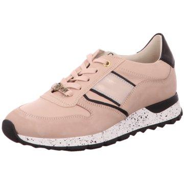 XSA Sneaker rosa