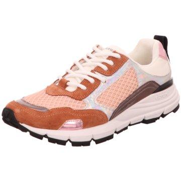 D'acquasparta Sneaker Low braun