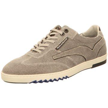 Floris van Bommel Sneaker Low grau