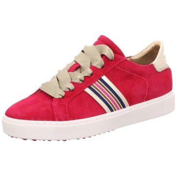 Maripé Sneaker rot