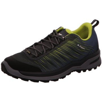 the best attitude 84c4b 20725 LOWA Outdoor Schuh grau